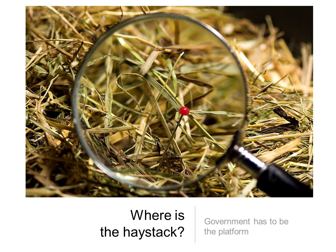 Where is the haystack? Government has to be the platform
