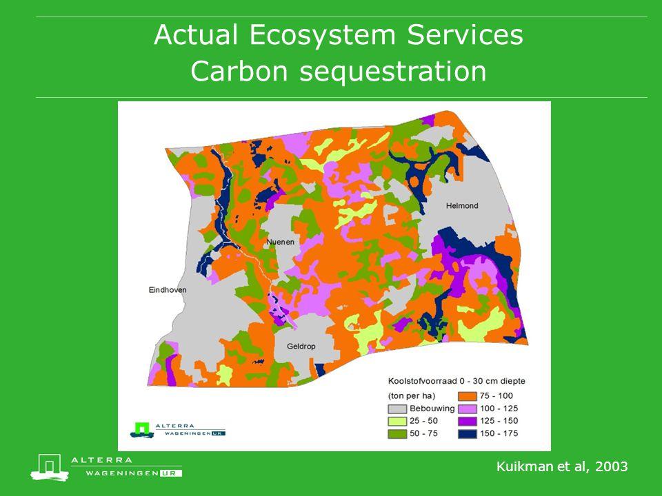 Actual Ecosystem Services Carbon sequestration Kuikman et al, 2003