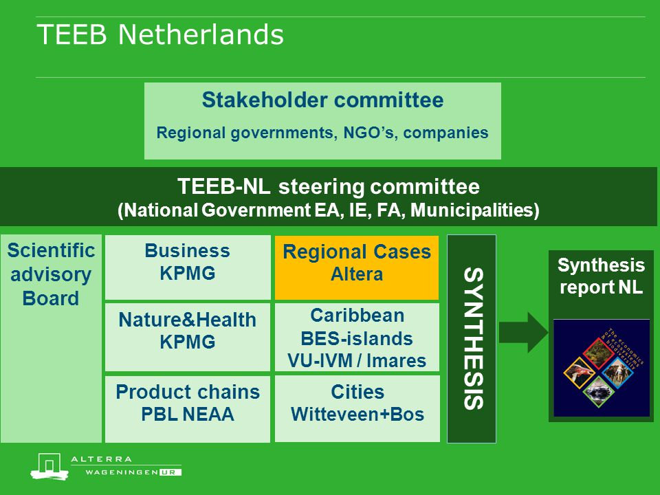 TEEB Netherlands TEEB-NL steering committee (National Government EA, IE, FA, Municipalities) Regional Cases Altera Business KPMG Product chains PBL NE