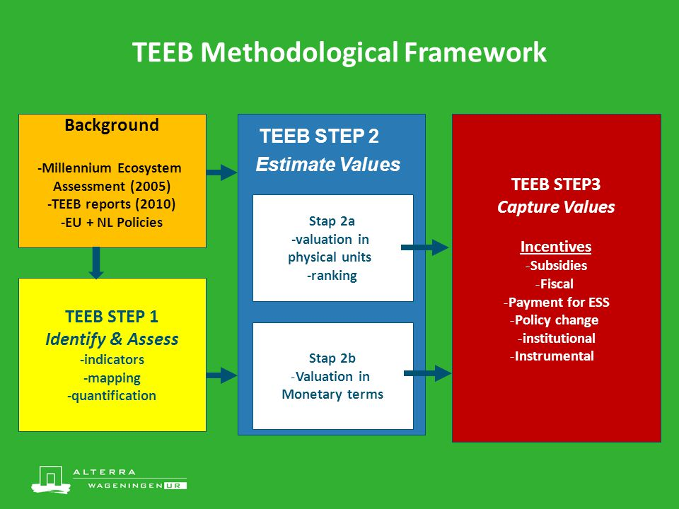 TEEB Methodological Framework TEEB STEP 1 Identify & Assess -indicators -mapping -quantification TEEB STEP 2 Estimate Values Stap 2a -valuation in physical units -ranking Stap 2b -Valuation in Monetary terms TEEB STEP3 Capture Values Incentives -Subsidies -Fiscal -Payment for ESS -Policy change -institutional -Instrumental Background -Millennium Ecosystem Assessment (2005) -TEEB reports (2010) -EU + NL Policies