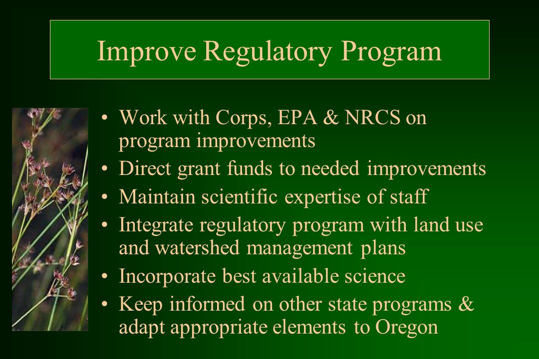 Improve Regulatory Program Work with Corps, EPA & NRCS on program improvements Direct grant funds to needed improvements Maintain scientific expertise of staff Integrate regulatory program with land use and watershed management plans Incorporate best available science Keep informed on other state programs & adapt appropriate elements to Oregon