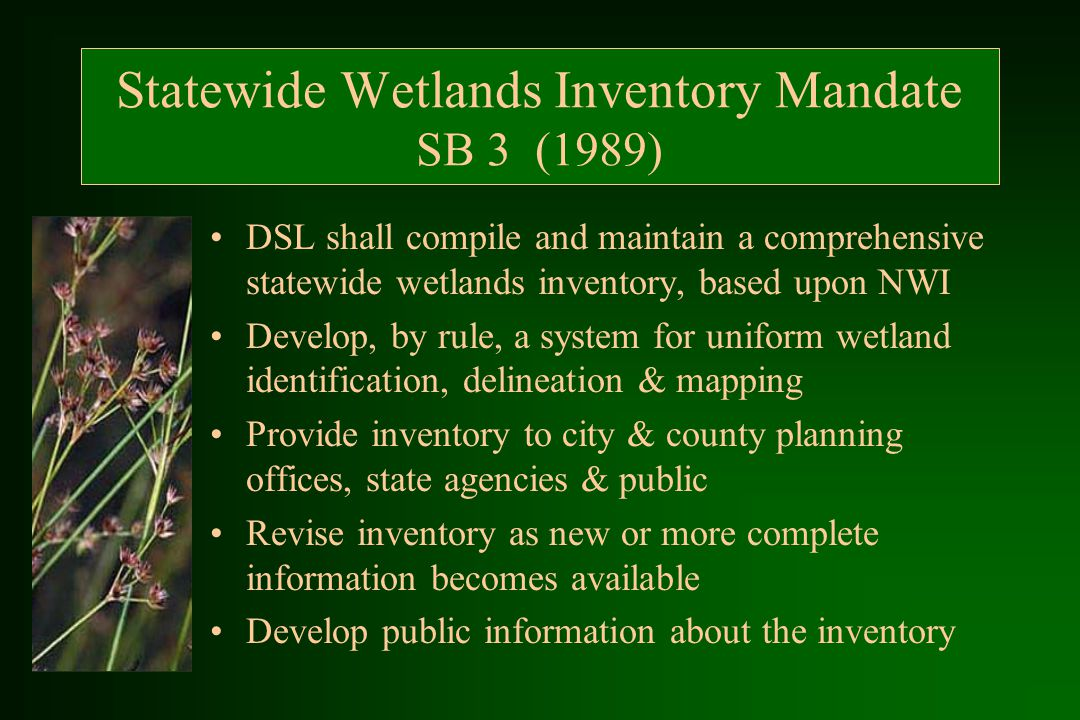 Statewide Wetlands Inventory Mandate SB 3 (1989) DSL shall compile and maintain a comprehensive statewide wetlands inventory, based upon NWI Develop, by rule, a system for uniform wetland identification, delineation & mapping Provide inventory to city & county planning offices, state agencies & public Revise inventory as new or more complete information becomes available Develop public information about the inventory