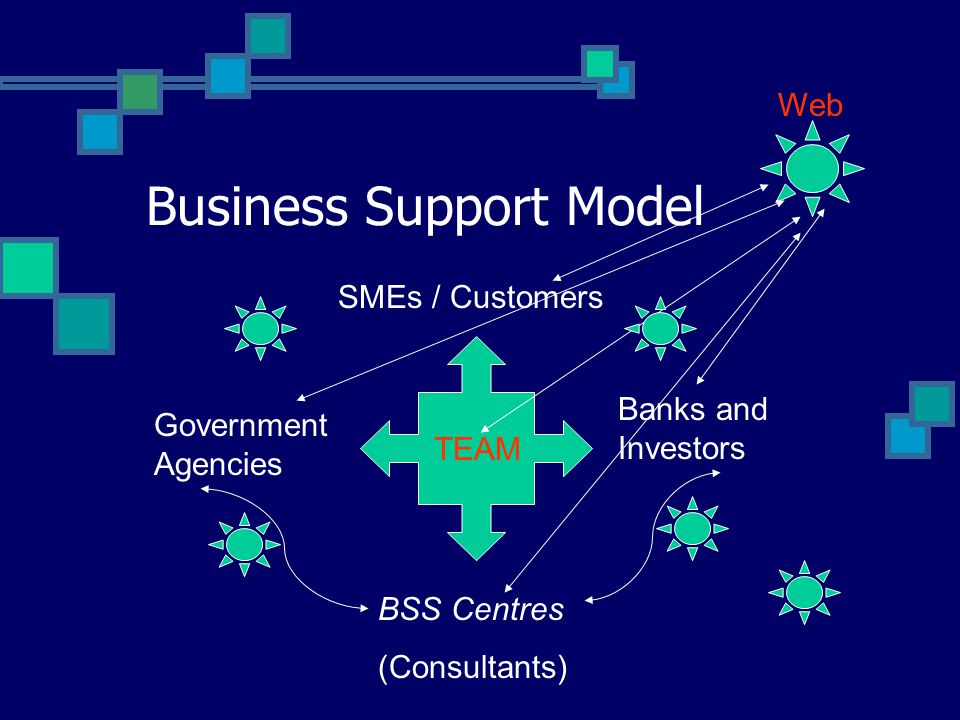 Business Support Model SMEs / Customers Government Agencies Banks and Investors BSS Centres (Consultants) TEAM Web