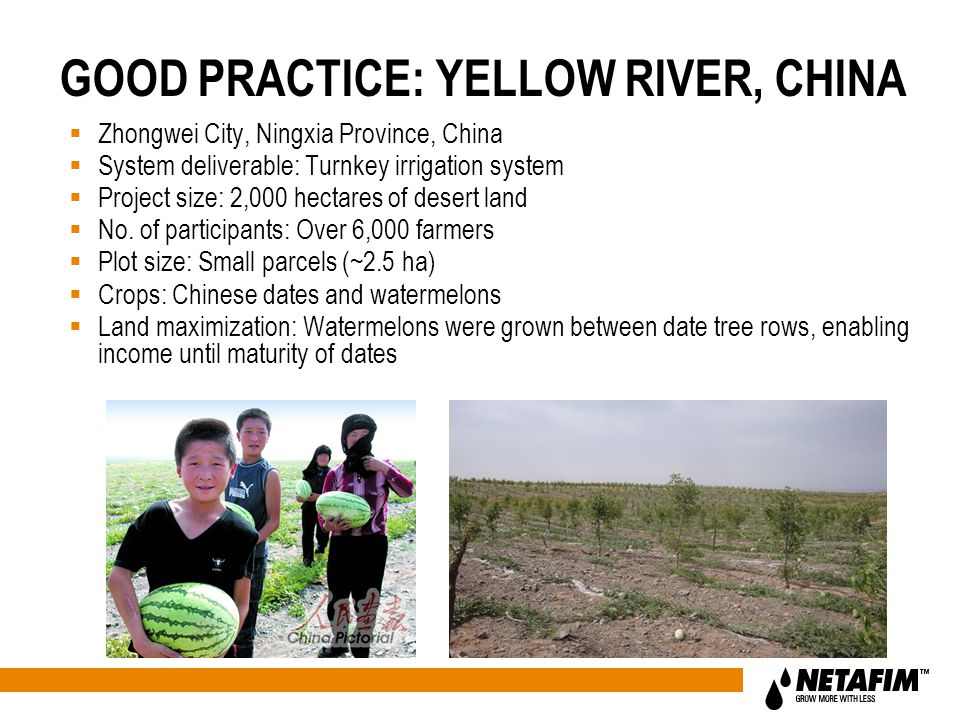 GOOD PRACTICE: YELLOW RIVER, CHINA  Zhongwei City, Ningxia Province, China  System deliverable: Turnkey irrigation system  Project size: 2,000 hectares of desert land  No.