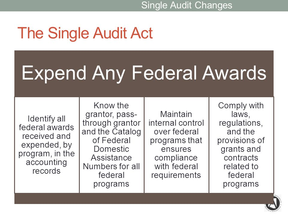 The Single Audit Act Expend Any Federal Awards Identify all federal awards received and expended, by program, in the accounting records Know the grantor, pass- through grantor and the Catalog of Federal Domestic Assistance Numbers for all federal programs Maintain internal control over federal programs that ensures compliance with federal requirements Comply with laws, regulations, and the provisions of grants and contracts related to federal programs Single Audit Changes