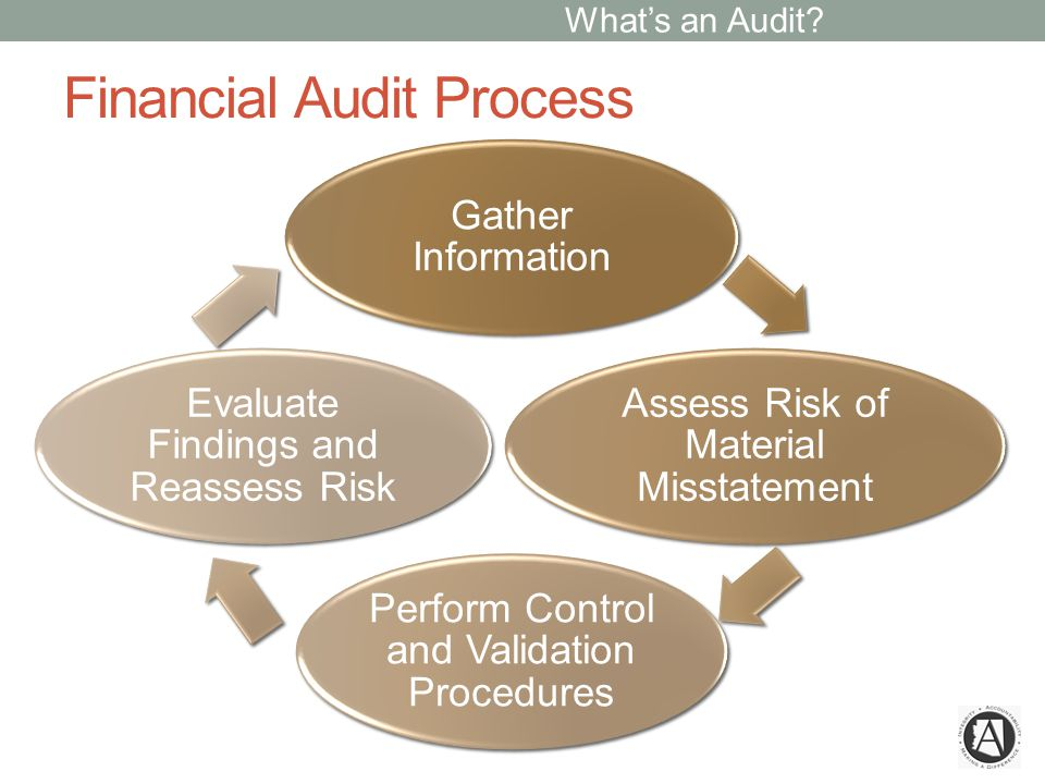 Financial Audit Procedures What do you do.How do you do it.