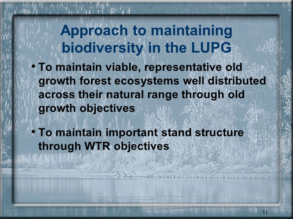 11 Approach to maintaining biodiversity in the LUPG To maintain viable, representative old growth forest ecosystems well distributed across their natural range through old growth objectives To maintain important stand structure through WTR objectives