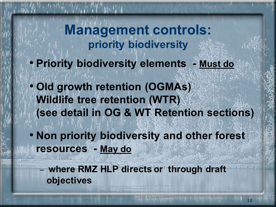 18 Management controls: priority biodiversity Priority biodiversity elements - Must do Old growth retention (OGMAs) Wildlife tree retention (WTR) (see detail in OG & WT Retention sections) Non priority biodiversity and other forest resources - May do – where RMZ HLP directs or through draft objectives
