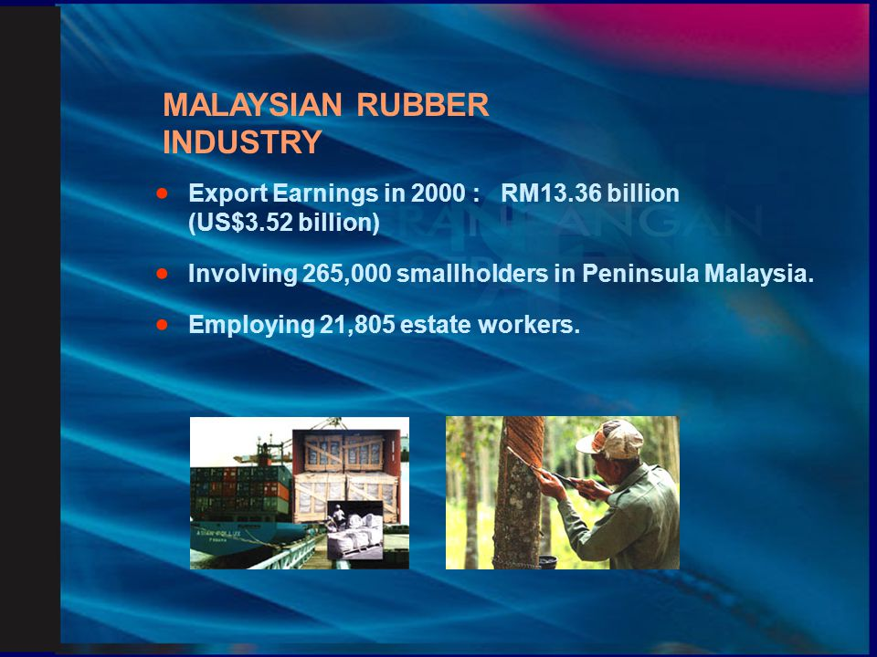 PLANTED AREA UNDER RUBBER  Smallholdings:1,115,800 hectares (88 %).