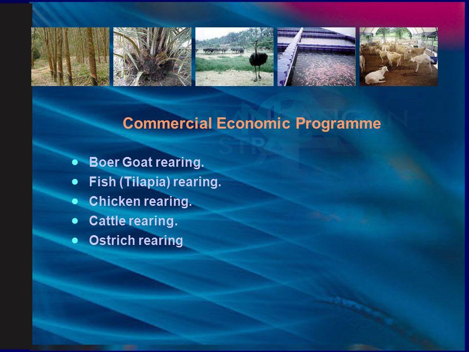 Smallholders Institutional Development Programme  Smallholders Cooperatives.