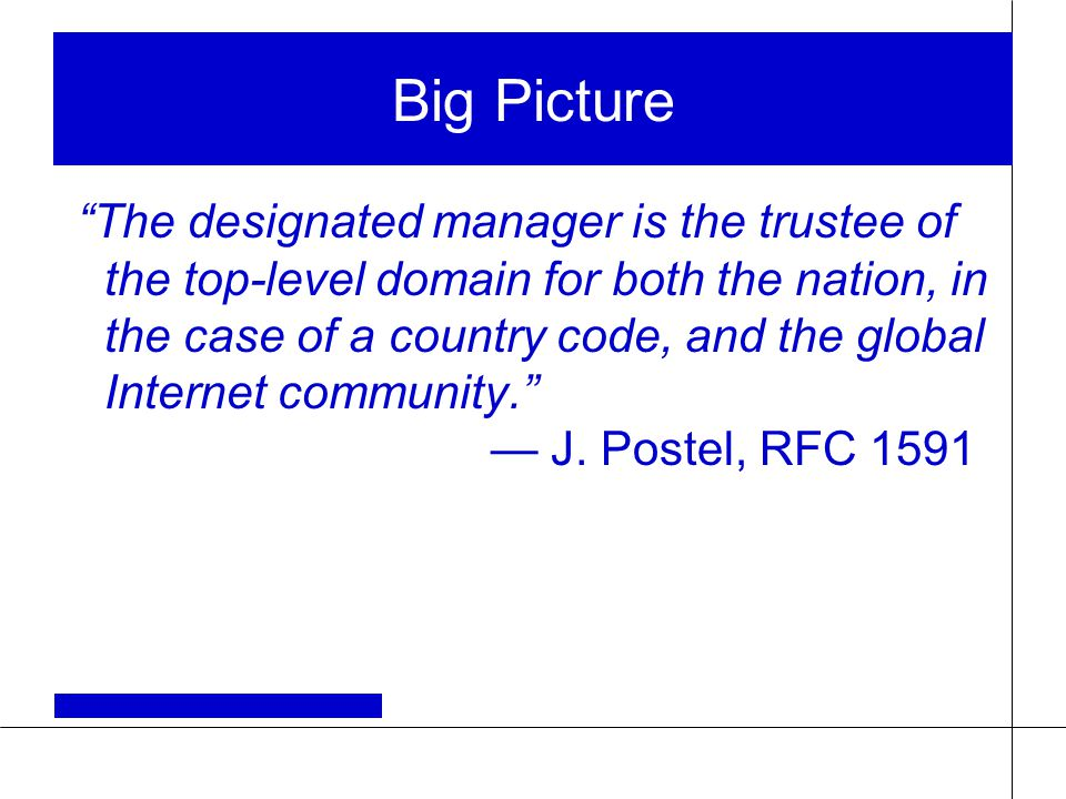 Big Picture The designated manager is the trustee of the top-level domain for both the nation, in the case of a country code, and the global Internet community. — J.