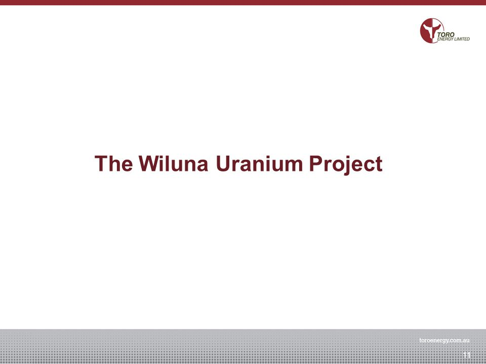 The Wiluna Uranium Project 11