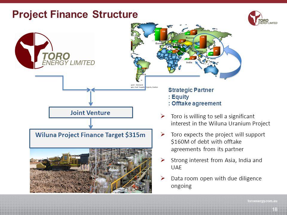 Joint Venture Wiluna Project Finance Target $315m Strategic Partner : Equity : Offtake agreement Wiluna Project Financing Concept 18 Project Finance S