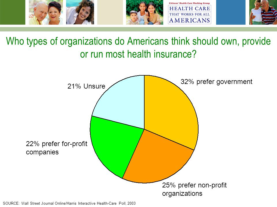 Who types of organizations do Americans think should own, provide or run most health insurance.