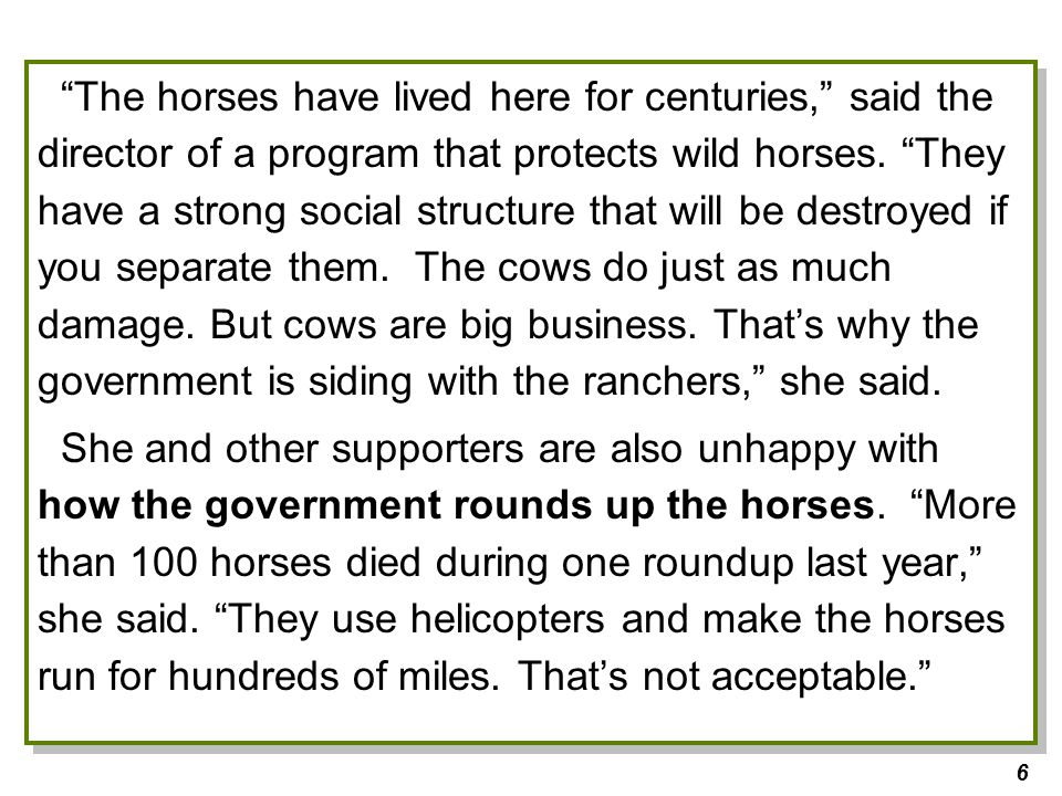 6 The horses have lived here for centuries, said the director of a program that protects wild horses.