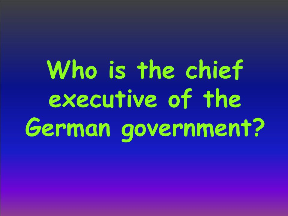 Who is the chief executive of the German government