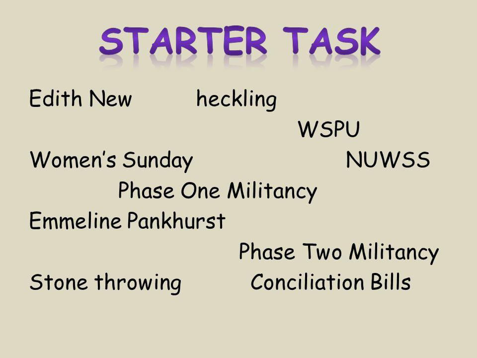 Edith New heckling WSPU Women's Sunday NUWSS Phase One Militancy Emmeline Pankhurst Phase Two Militancy Stone throwing Conciliation Bills