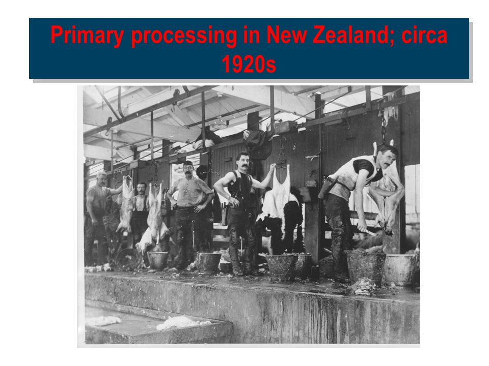 Primary processing in New Zealand; circa 1920s