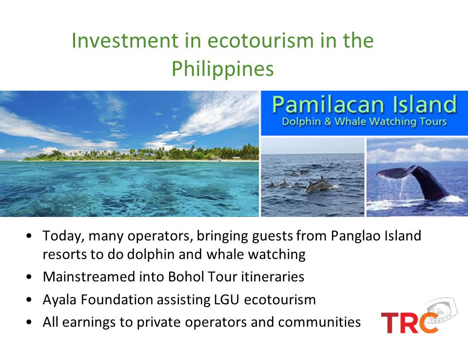 Investment in ecotourism in the Philippines Today, many operators, bringing guests from Panglao Island resorts to do dolphin and whale watching Mainst