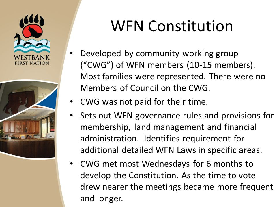 WFN Constitution Developed by community working group ( CWG ) of WFN members (10-15 members).