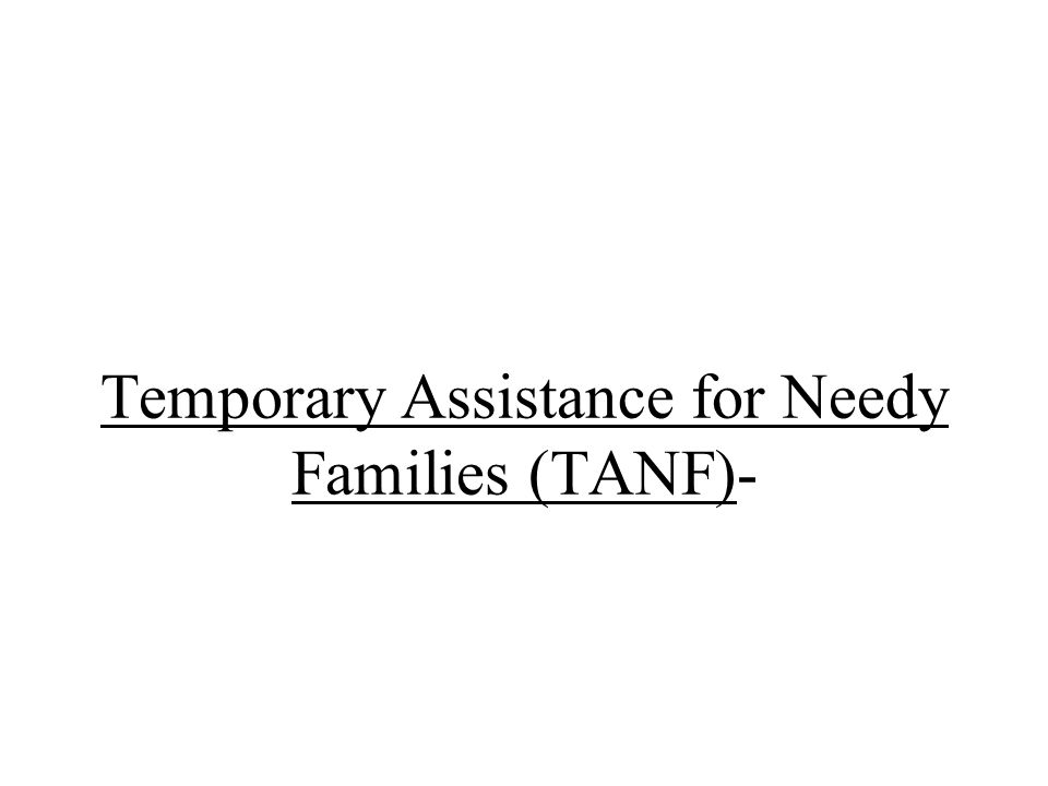 Temporary Assistance for Needy Families (TANF)-