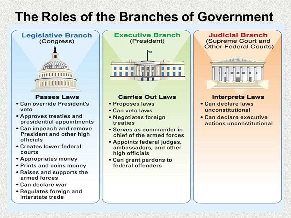 The Roles of the Branches of Government