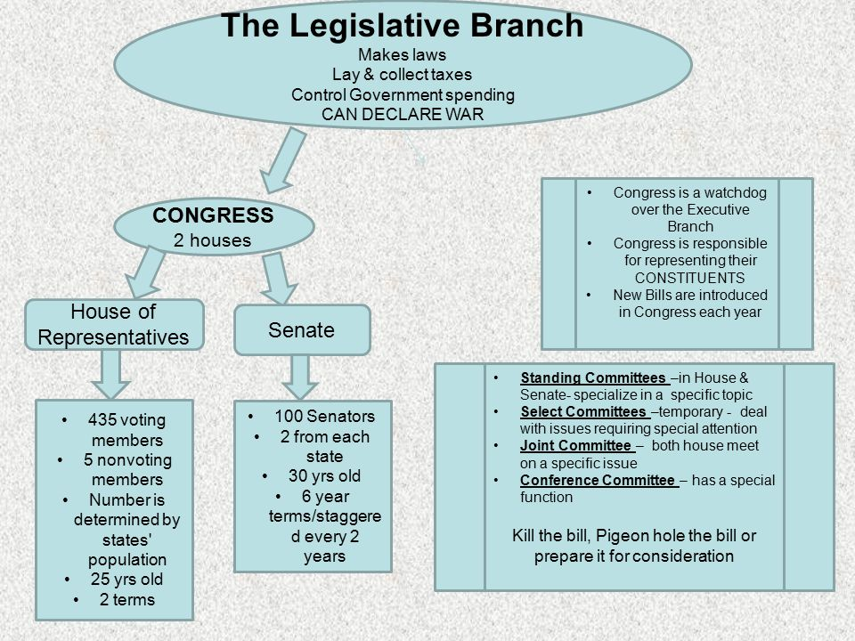 The Legislative Branch Makes laws Lay & collect taxes Control Government spending CAN DECLARE WAR CONGRESS 2 houses House of Representatives Senate 435 voting members 5 nonvoting members Number is determined by states population 25 yrs old 2 terms 100 Senators 2 from each state 30 yrs old 6 year terms/staggere d every 2 years Congress is a watchdog over the Executive Branch Congress is responsible for representing their CONSTITUENTS New Bills are introduced in Congress each year Standing Committees –in House & Senate- specialize in a specific topic Select Committees –temporary - deal with issues requiring special attention Joint Committee – both house meet on a specific issue Conference Committee – has a special function Kill the bill, Pigeon hole the bill or prepare it for consideration