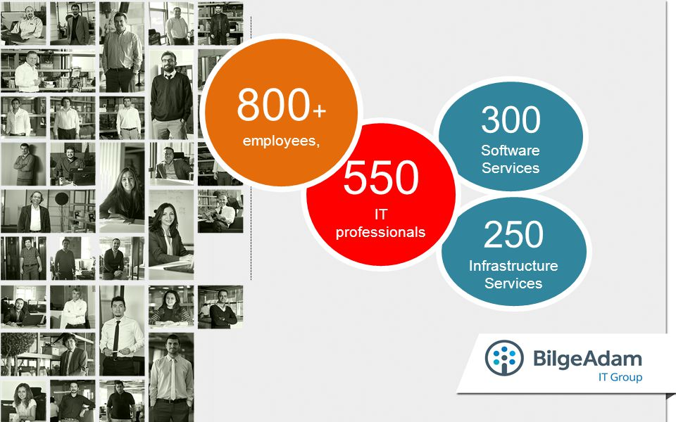 250 Infrastructure Services 300 Software Services 550 IT professionals 800 + employees,
