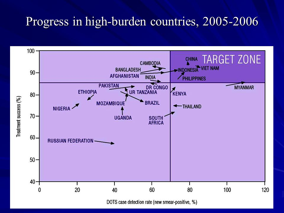 Progress in high-burden countries, 2005-2006