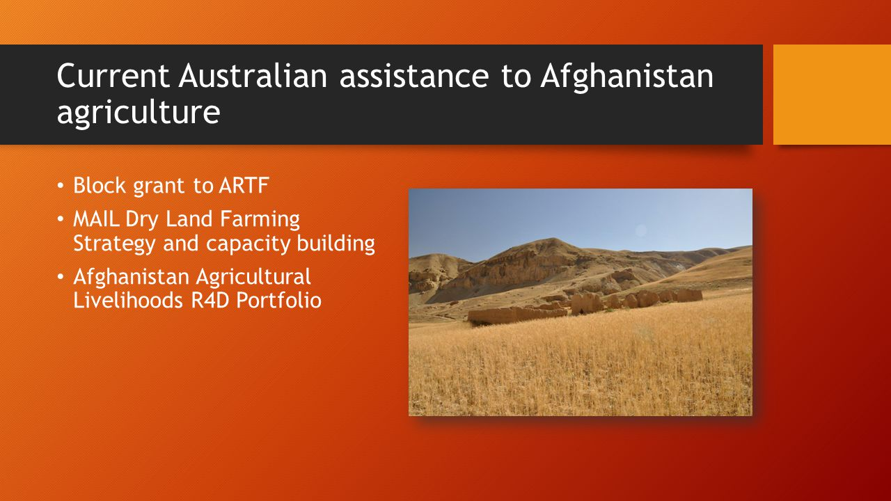 Current Australian assistance to Afghanistan agriculture Block grant to ARTF MAIL Dry Land Farming Strategy and capacity building Afghanistan Agricultural Livelihoods R4D Portfolio
