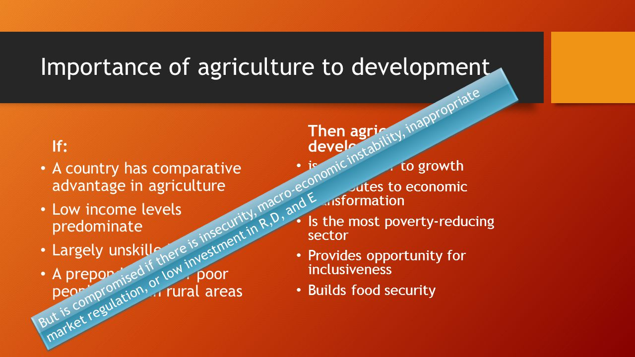 Importance of agriculture to development If: A country has comparative advantage in agriculture Low income levels predominate Largely unskilled labour A preponderance of poor people living in rural areas Then agricultural development: is a precursor to growth Contributes to economic transformation Is the most poverty-reducing sector Provides opportunity for inclusiveness Builds food security But is compromised if there is insecurity, macro-economic instability, inappropriate market regulation, or low investment in R,D, and E