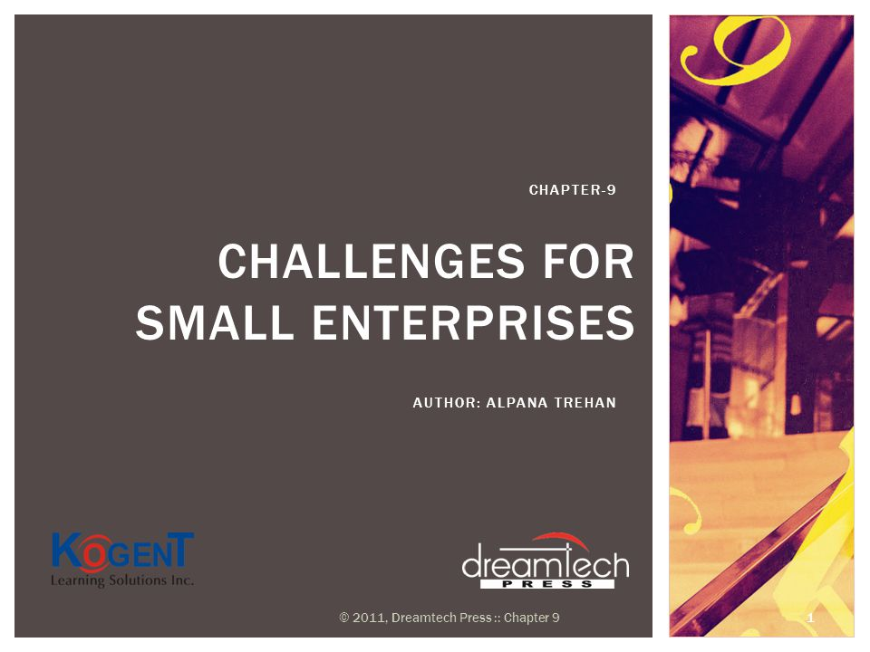 CHALLENGES FOR SMALL ENTERPRISES AUTHOR: ALPANA TREHAN CHAPTER-9 © 2011, Dreamtech Press :: Chapter 9 1