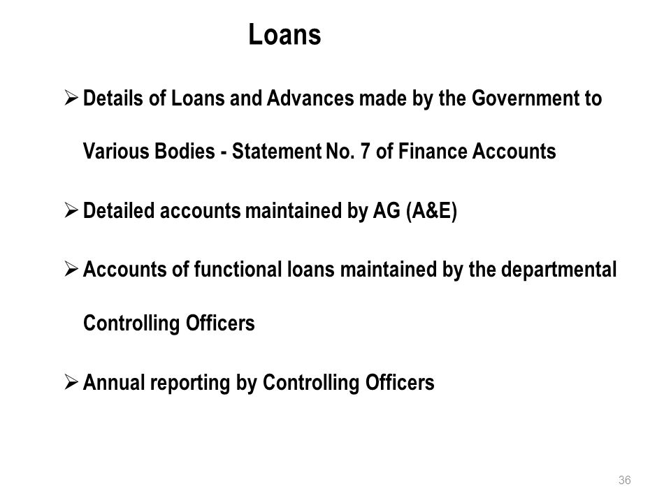36 Loans  Details of Loans and Advances made by the Government to Various Bodies - Statement No.