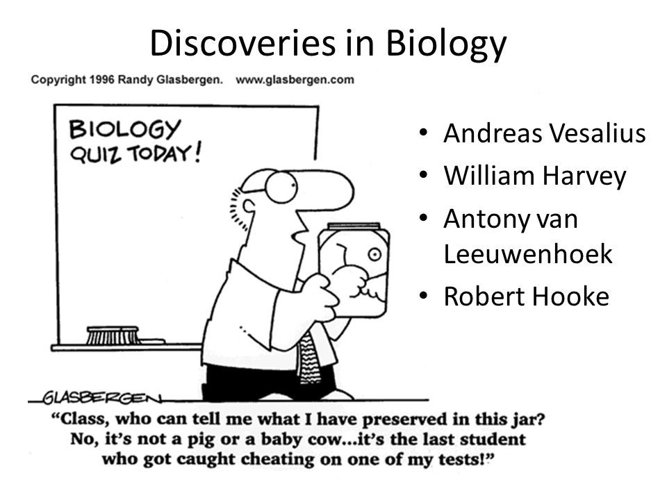 Discoveries in Biology Andreas Vesalius William Harvey Antony van Leeuwenhoek Robert Hooke