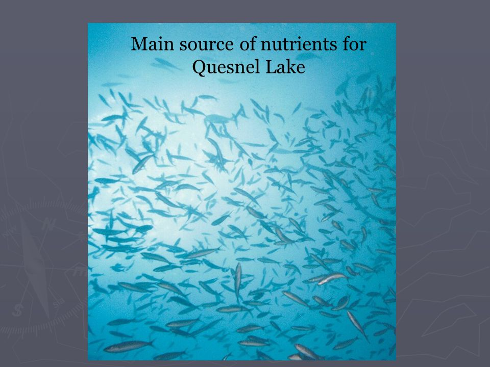 Main source of nutrients for Quesnel Lake