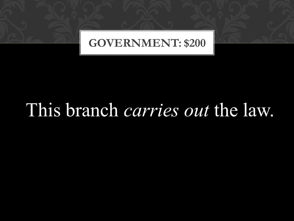 GOVERNMENT: $200 This branch carries out the law.