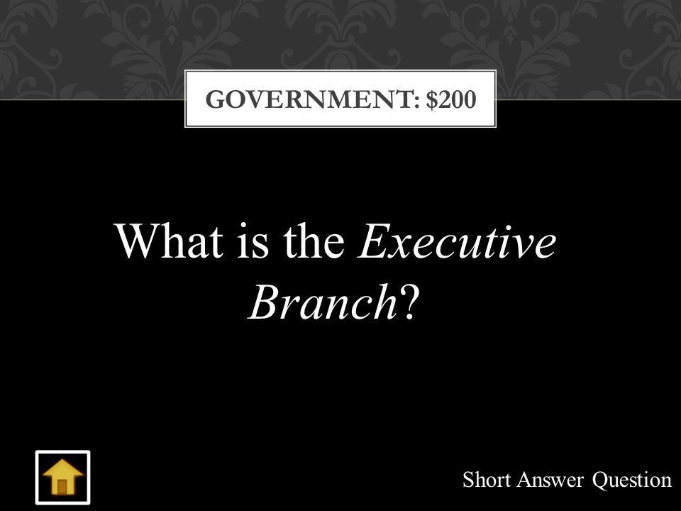 GOVERNMENT: $200 What is the Executive Branch Short Answer Question