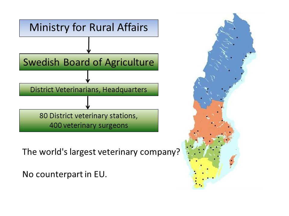 Ministry for Rural Affairs Swedish Board of Agriculture District Veterinarians, Headquarters 80 District veterinary stations, 400 veterinary surgeons Ministry for Rural Affairs Swedish Board of Agriculture The world s largest veterinary company.