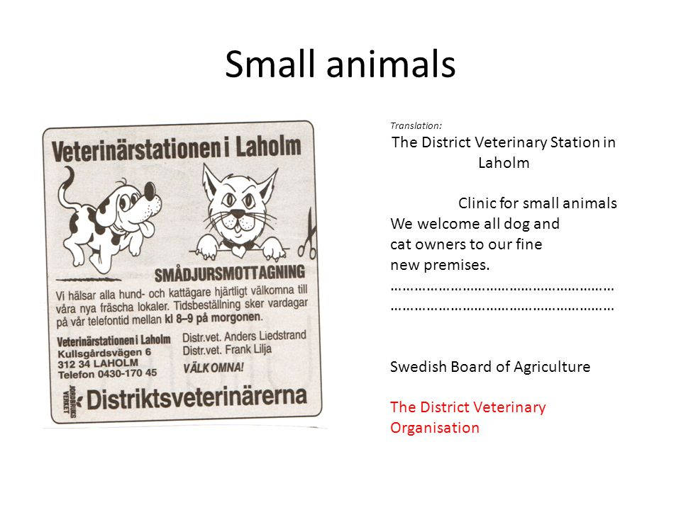 Small animals Translation: The District Veterinary Station in Laholm Clinic for small animals We welcome all dog and cat owners to our fine new premises.