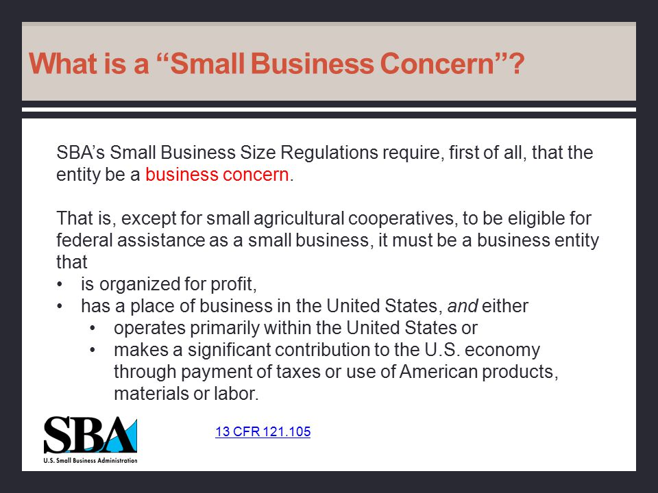 What is a Small Business Concern .