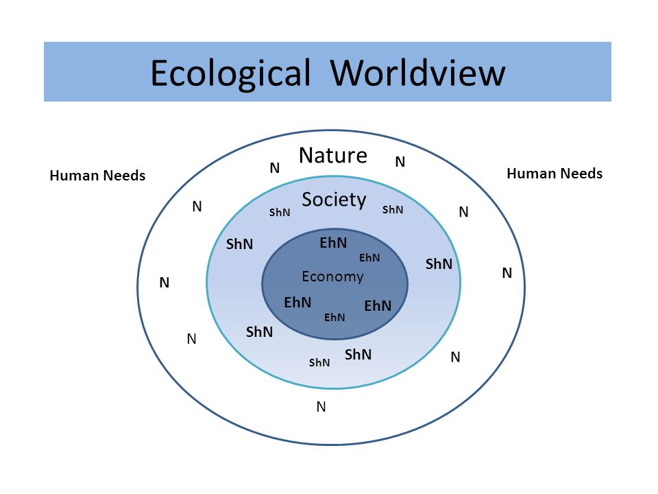Nature Economy Society Ecological Worldview N ShN EhN N N N ShN EhN ShN EhN ShN N N EhN ShN Human Needs ShN