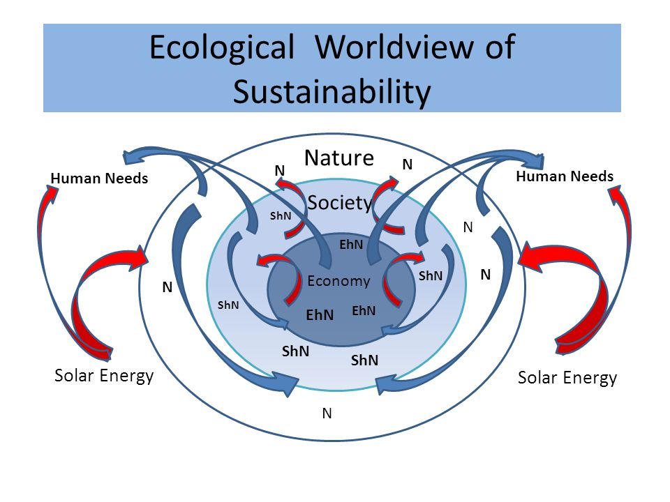 Nature Economy Society Ecological Worldview of Sustainability N ShN EhN N N N ShN EhN ShN N N EhN ShN Human Needs Solar Energy