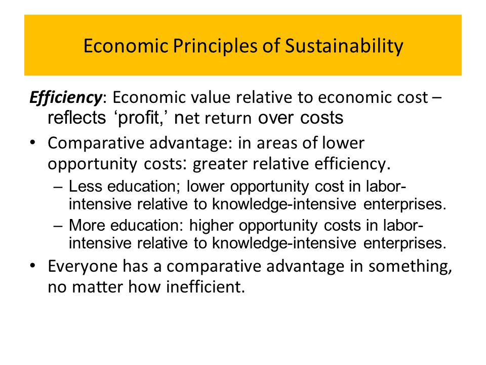 Economic Principles of Sustainability Efficiency: Economic value relative to economic cost – reflects 'profit,' n et return over costs Comparative adv
