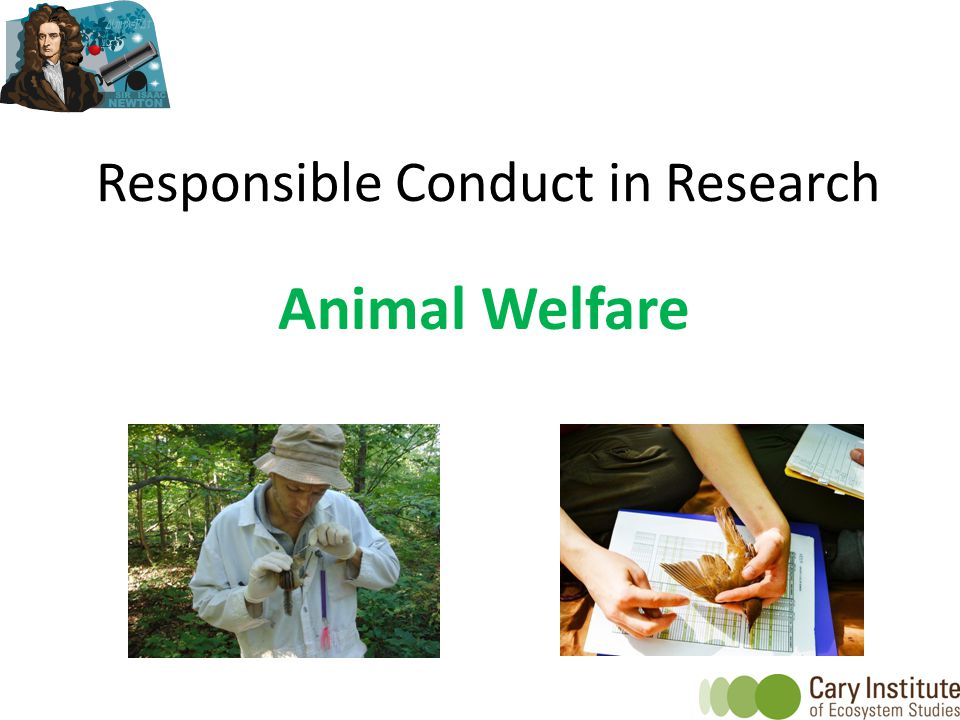 Responsible Conduct in Research Animal Welfare