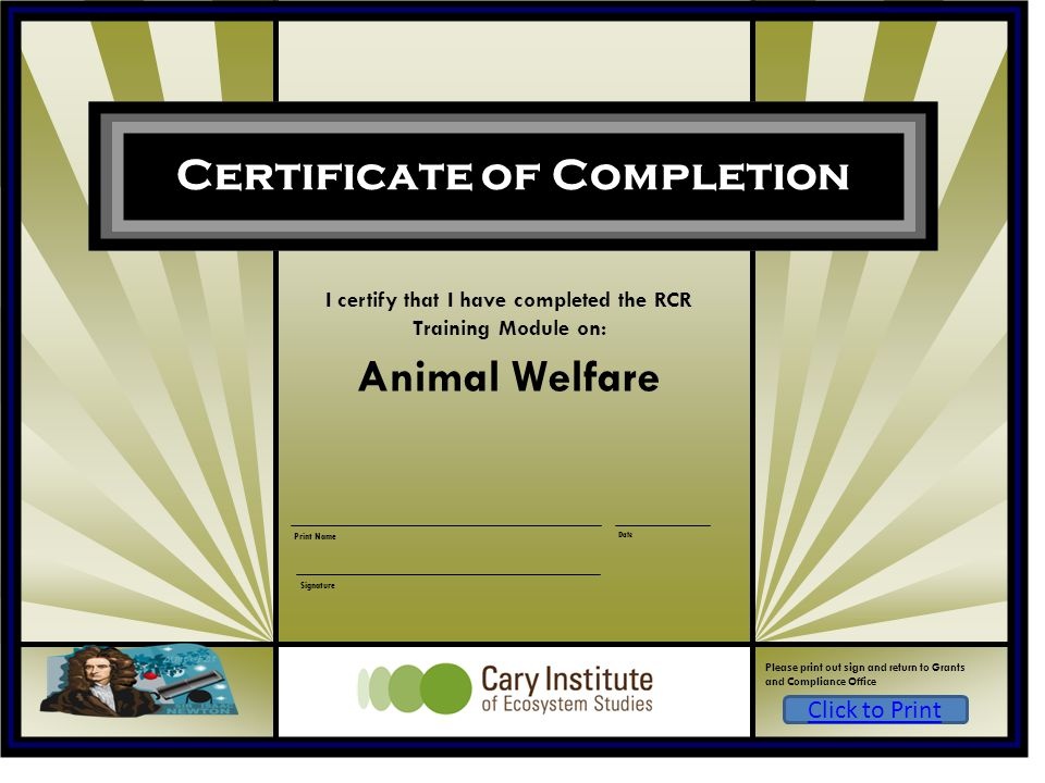 I certify that I have completed the RCR Training Module on: Animal Welfare Date Print Name Signature Certificate of Completion Please print out sign a