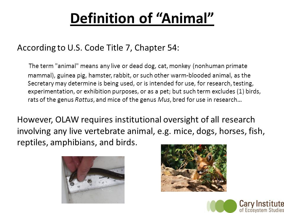 "Definition of ""Animal"" According to U.S. Code Title 7, Chapter 54: The term"