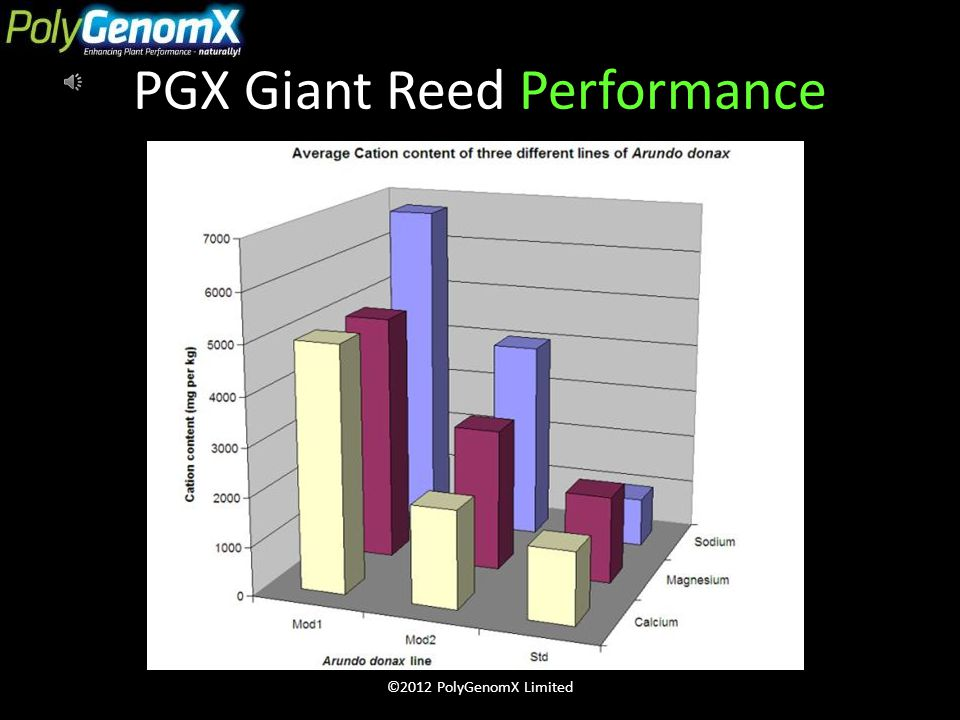 PGX Giant Reed Numbers 100% more salt tolerant 33% greater CO2 uptake 33% faster growing 40 times greater salt breakdown 90% less area required $2billion+ energy created Zero salt waste ©2012 PolyGenomX Limited