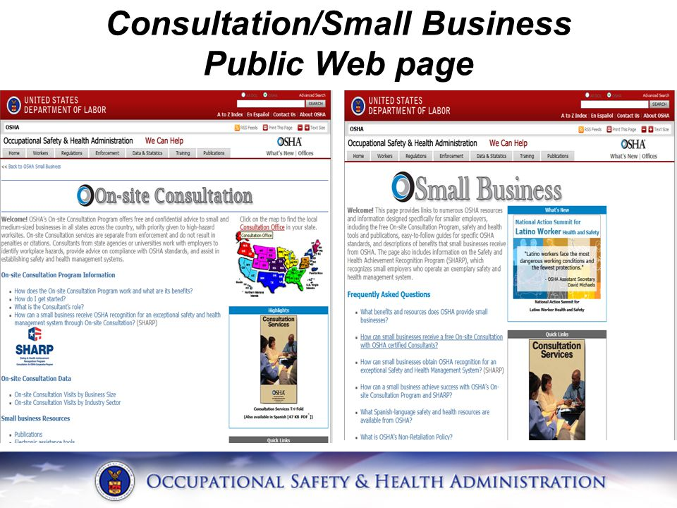 Consultation/Small Business Public Web page