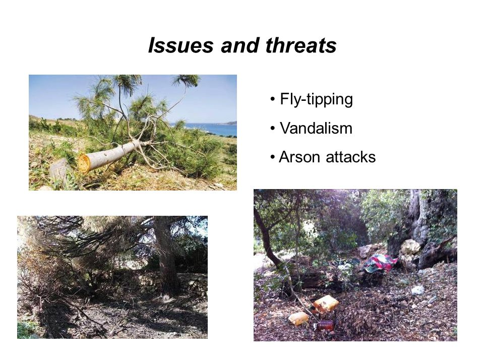 Issues and threats Fly-tipping Vandalism Arson attacks