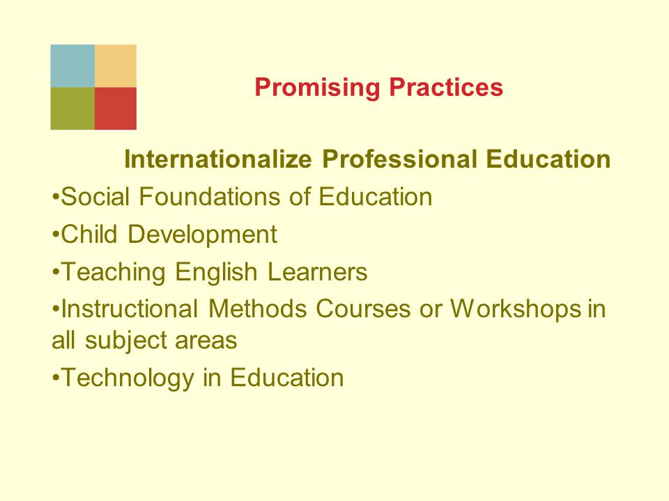 Promising Practices Internationalize Professional Education Social Foundations of Education Child Development Teaching English Learners Instructional Methods Courses or Workshops in all subject areas Technology in Education